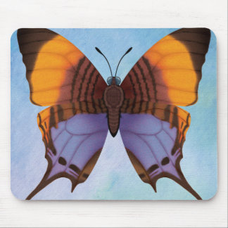 Pansy Daggerwing Butterfly Mouse Pad