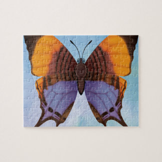 Pansy Daggerwing Butterfly Puzzle