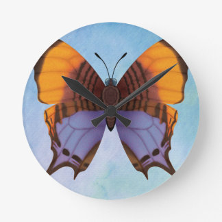 Pansy Daggerwing Butterfly Round Clock