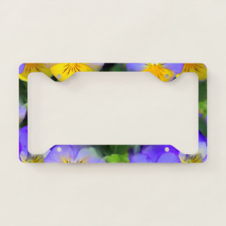 Pansy echos license plate frame