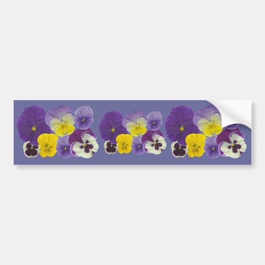 Pansy Flowers Bumper Sticker