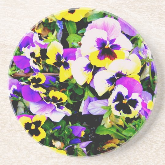 pansy flowers coaster