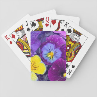Pansy flowers floating in bird bath with dew 2 poker deck