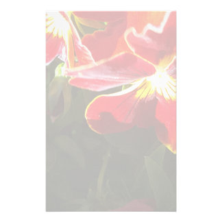 Pansy flowers stationery