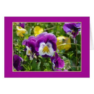 Pansy Garden Blank Card