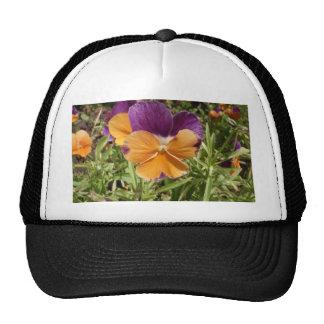 Pansy Jolly Joker Trucker Hat