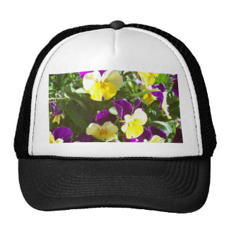 Pansy Patch Trucker Hat