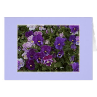 pansy purple card