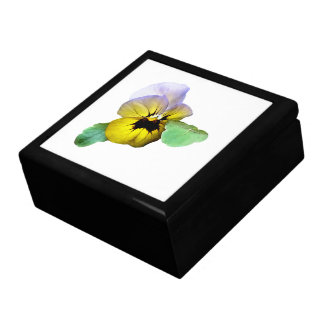 Pansy Saluting Gift Box