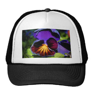 Pansy Trucker Hat