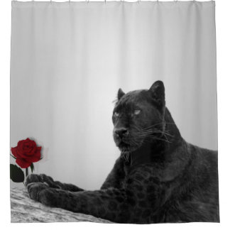 Panther and Red Rose