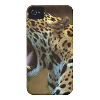 Panther Bearing Teeth iPhone 4 Covers