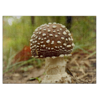 Panther Cap Mushroom Glass Chopping Board
