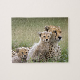 Panther Jigsaw Puzzle