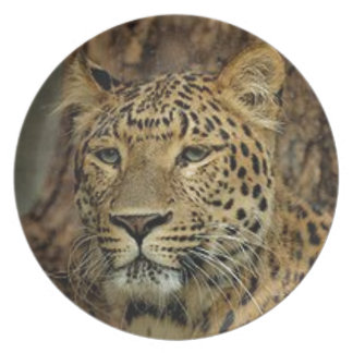 Panther Stalking Dinner Plate