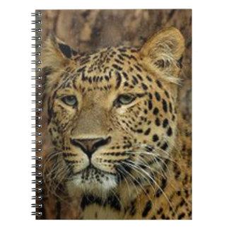 Panther Stalking Spiral Notebook