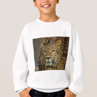 Panther Stalking Sweatshirt