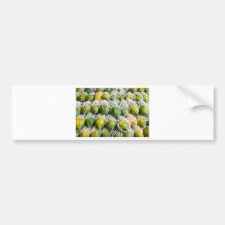 Papaya Bumper Sticker