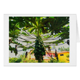 Papaya Tree Card
