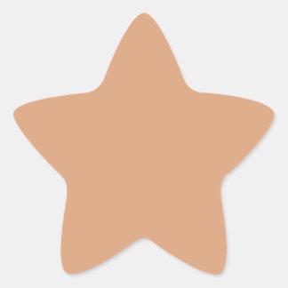 Paper Bag Star Sticker