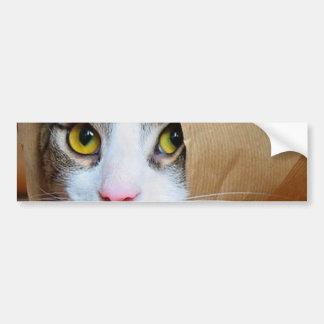 Paper cat - funny cats - cat meme - crazy cat bumper sticker