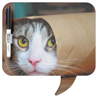Paper cat - funny cats - cat meme - crazy cat dry erase board