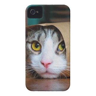Paper cat - funny cats - cat meme - crazy cat iPhone 4 cases