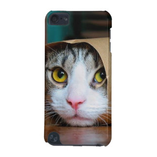 Paper cat - funny cats - cat meme - crazy cat iPod touch 5G covers