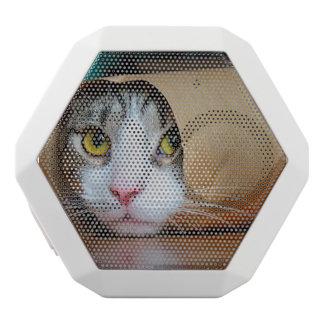 Paper cat - funny cats - cat meme - crazy cat white bluetooth speaker