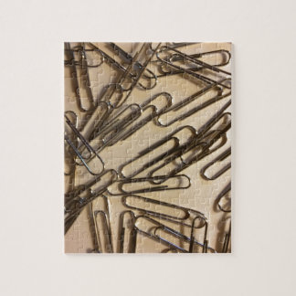 Paper Clips For The Paper Person Puzzle