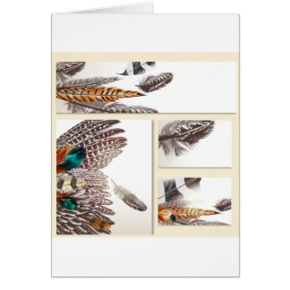 Paper greeting with Feathers Card