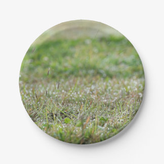 Paper plate Bleaches on grass 7 Inch Paper Plate