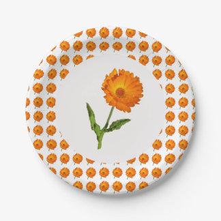 Paper Plate - Calendula