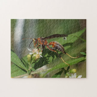 Paper Wasp on Flower Puzzle