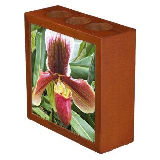 Paphiopedilum Orchid Floral Desk Organizer
