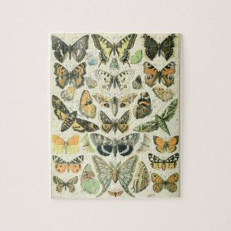 Papillion puzzle