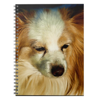 Papillon Beauty - Dog Breed Spiral Note Book