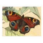 Papillon de paon carte postale