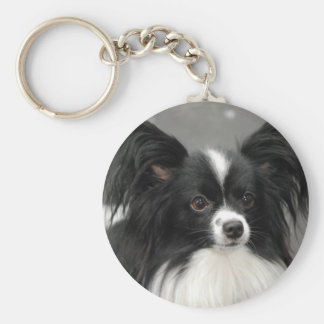 Papillon Dog  Keychain