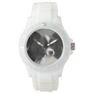 Papillon Dogs Watch
