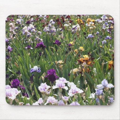 Papillon et iris pourpre Mousepad Tapis De Souris