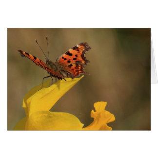 Papillon et jonquille de virgule carte de vœux