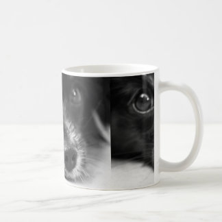 papillon face coffee mug