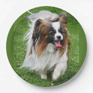 Papillon_in motion paper plate