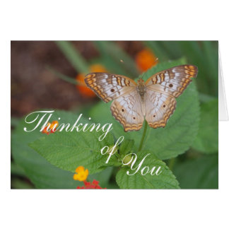 Papillon pensant à vous carte de correspondance