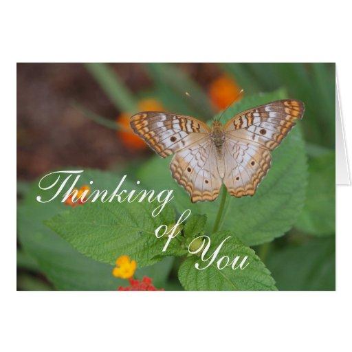 Papillon pensant à vous cartes de vœux