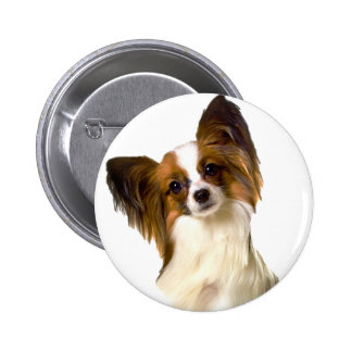 Papillon puppy Isolated on editable Background Pil 2 Inch Round Button
