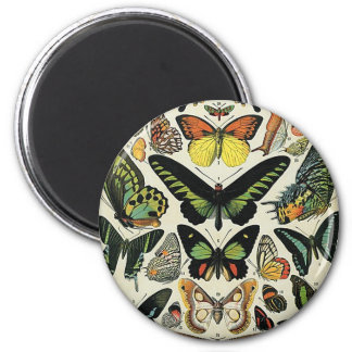 Papillons 2 Inch Round Magnet