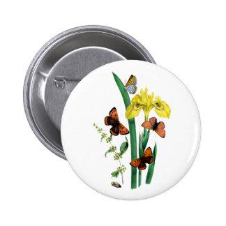 Papillons et iris jaune pin's avec agrafe