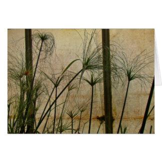 Papyrus Card
